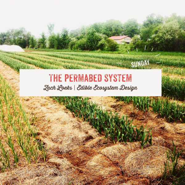 The Permabed System