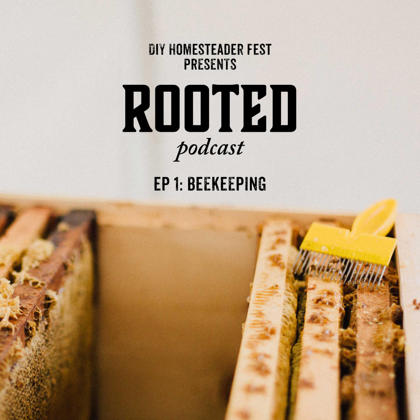 Rooted Podcast - Beekeeping