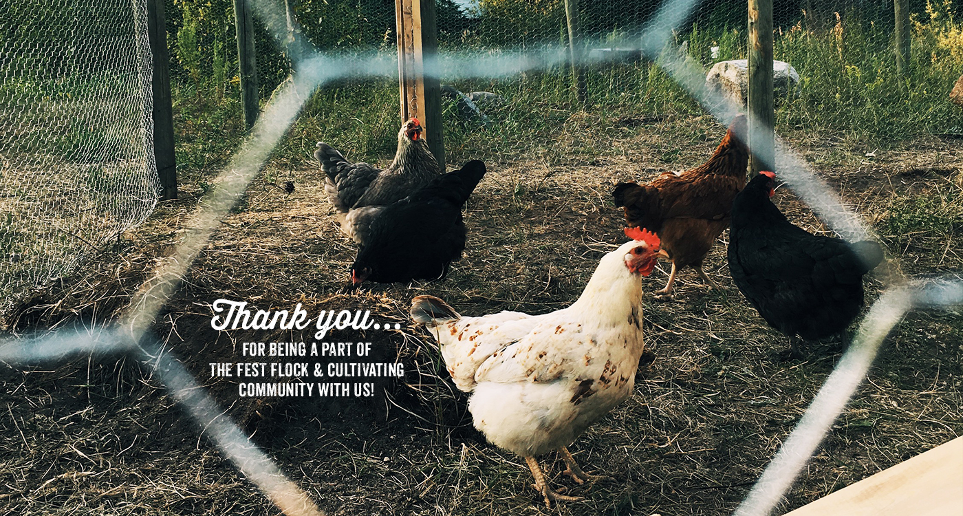 Thank you... for being a part of the fest flock and cultivating community with us!